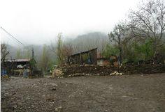 Old Houses - Karaçam