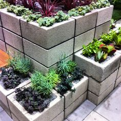 Cement block planter. This is different, but pretty nice!