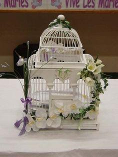 Urne cage oiseau