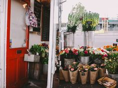 sweet little flower shop... one day... maybe?