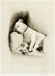 "Cecil Aldin was a British illustrator who loved to draw dogs. He illustrated a book called Sleeping Partners featuring his dogs ""Cracker,"" a white bull terrier, and ""Micky,"" a dark Irish Animal Sketches, Animal Drawings, Dog Drawings, Drawing Animals, White Bull Terrier, Collages, Poster Prints, Art Prints, Animal Illustrations"