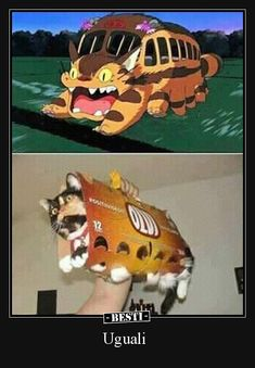 Funny pictures about My Neighbor Totoro Cosplay. Oh, and cool pics about My Neighbor Totoro Cosplay. Also, My Neighbor Totoro Cosplay photos. Cute Funny Animals, Funny Cute, Chat Bus, Tierischer Humor, Best Cosplay Ever, Meme Comics, Anime Angel, My Neighbor Totoro, Animal Memes