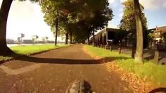 Rhine Bike Path near Cologne (Germany) - Virtual Cycling - Indoor Bike T...