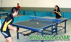 PGA♣️♣️♣️ONGA88.COM♣️♣️♣️PGA: 체험머니♣️♣️♣️ONGA88.COM♣️♣️♣️체험머니 Air Hockey, Ping Pong Table, Tennis, College, Google Search, Sports, Home Decor, Hs Sports, University