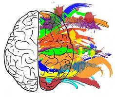 Что любит мозг?