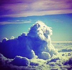 lion in sky - Google Search