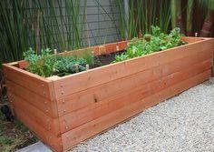 long wood planter box