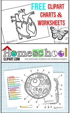 Free Clipart, Charts & Worksheets at HomeschoolClipart.com  Perfect for making your own teaching resources!