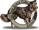 Old-Time Scotch Collie Association