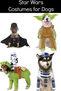 Hot Star Wars Themed Halloween Costumes for Dogs