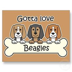 Love those beagles. You just gotta love them! <3