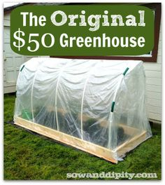 This is the easiest small greenhouse tutorial out there! See how at http://www.sowanddipity.com/polytunnel-tutorial/ #greenhouse #garden