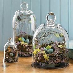 Natural decor for spring