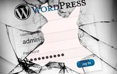 WordPress Most Popular Security Plugins (Infographic)