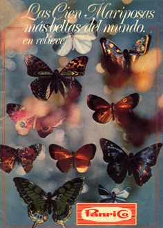 Álbum de cromos de Las cien Mariposas más bellas del mundo en relieve de Panrico