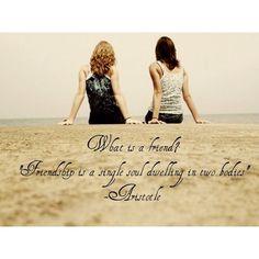 Aristotle quote on friendship