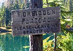 Forbidden Plateau - Strathcona Park Central Island, Vancouver Island, Paradise, Hiking, Ocean, River, Adventure, Mountains, Park