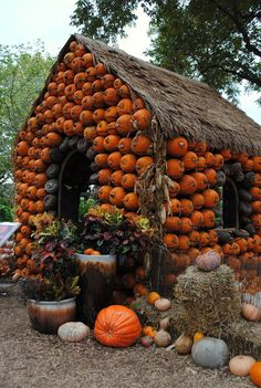 I'll carve, and I'll sculpt, and I'll whittle your house down! What're you doing with your pumpkins this fall?