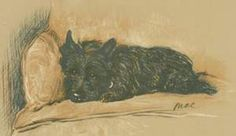 Lucy Dawson ~ Famous Dog illustrator