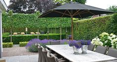 1000 images about garten on pinterest tuin hedges and hydrangeas - Tuinontwerp ...