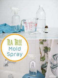 You can use natural ingredients to clean mold found in damp areas of your house, like the bathroom or on wood and carpet. Use tea tree oil, distilled vinegar and this recipe: http://www.ehow.com/how_4799896_clean-mold-tea-tree-oil.html?utm_source=pinterest.com&utm_medium=referral&utm_content=freestyle&utm_campaign=fanpage