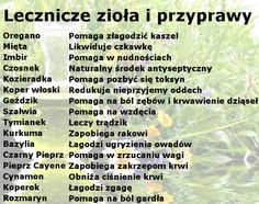 No niby tak 😜😜 Healthy Herbs, Healthy Tips, Health Diet, Health Fitness, Young Living Oils, Natural Medicine, Nutrition Tips, Good To Know, Natural Health