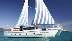 Sailing Whitsundays is an Airlie Beach based travel agency that offers day and overnight sailing adventures amongst the beautiful Whitsunday Islands of Northern Queensland. Sailing Whitsundays, Airlie Beach, Sailing Adventures, Travel Agency, Sailing Ships, Pride, Boat, Dinghy, Boats