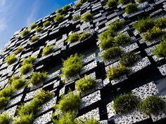Kengo Juma architecture. Greener Buildings.