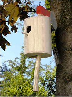 Original bird house using ax into tree