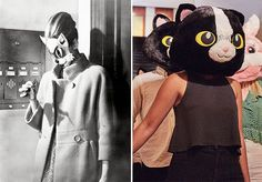 friday finds: cat head #halloween