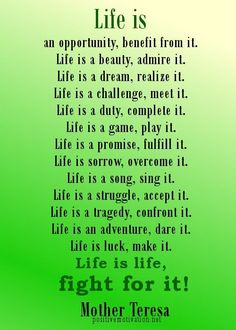 Life is only what you make of it ! You choose the path you want to take and we learn from it ! Live by this now.