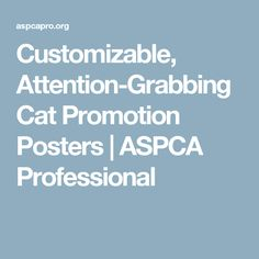 Customizable, Attention-Grabbing Cat Promotion Posters | ASPCA Professional