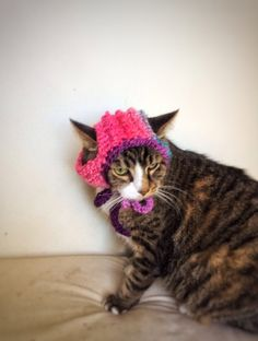 Crochet Cat Dog Hat Unique Handmade Pink Ombré Pet Accessories by DesignsbyPolina on Etsy https://www.etsy.com/ca/listing/239074129/crochet-cat-dog-hat-unique-handmade-pink