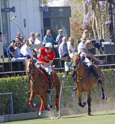 Silex stays unbeaten after the first two dates of the José Ignacio Domecq Memorial, the tournament that opens the Spring Season at Santa María Polo Club.