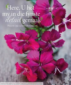 Die Here her my in die fynste detail gemaak Prayer Verses, Bible Verses, Beautiful Verses, Afrikaanse Quotes, Goeie More, Inspirational Qoutes, Printable Quotes, Jesus Quotes, Autumn Theme