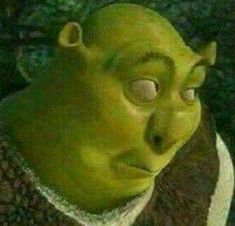 New Memes Para Contestar Shrek 62 Ideas Funny Profile Pictures, Funny Reaction Pictures, Funny Pictures, Memes Shrek, Memes Estúpidos, Life Memes, Shrek Funny, Meme Meme, Really Funny Memes
