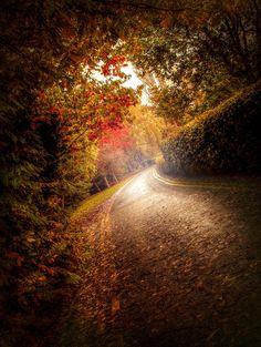 Autumn Road. by ~4420 on deviantART