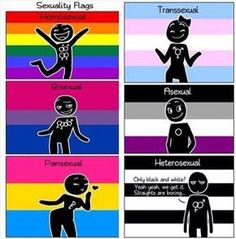 (Awww poor hetero ) at least they have a flag. Nothing for demisexuals. Lgbt Quotes, Pansexual Pride, Samurai Tattoo, Lgbt Love, Lol, Genderqueer, Lgbt Community, Cute Gay, Gay Pride