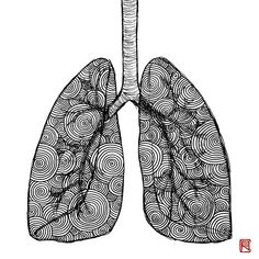 -Lungs- from Human Body Study Series by Body Study, Office Pictures, Lungs, Doctors, Human Body, Anastasia, Body Art, Contemporary Art, Brain