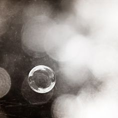 Black and White Photography - bubble