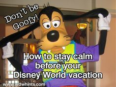 Disney Trip Planning: Keeping Calm ~ WDW Hints