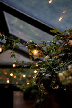 8 o'clock i the evening. Springtime. Drink my coffee an look to the ceiling of my little café. (dreaming)