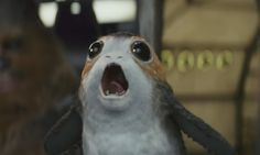 'Star Wars' Porg Memes That Will Brighten Your Day Whether You're A Fan Of The Movies Or Not