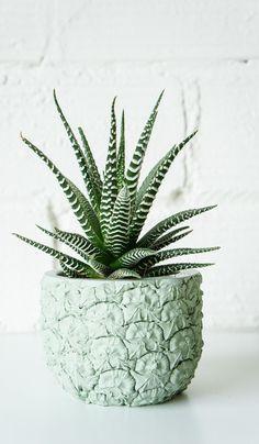 Cast Cement Horned Melon Planter – Spartan