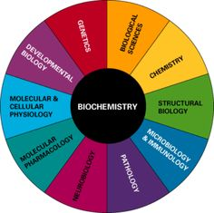 More biochemistry