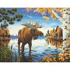 Paint By Number Kit 11inX14in-Majestic Moose