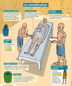 Educational infographic : Afficher l'image d'origine Study French, Learn French, Ancient History, Ancient Egypt, Art History Memes, Career Schools, Reading Practice, Africa Map, History Teachers