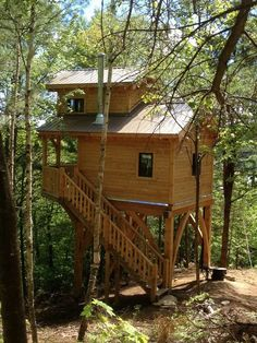 Elevated tiny house in the woods