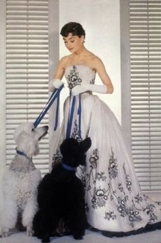 Beautiful photo of Audrey Hepburn and the two poodles!