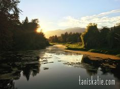 Beautiful summer nights over Hope River, Chilliwack BC Canada. Fraser Valley, I See It, Summer Nights, Wedding Portraits, Portrait Photographers, Canada, River, Photography, Outdoor